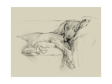 Dog Days I Premium Giclee Print by Ethan Harper
