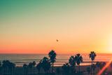 Venice Beach Sunset - LA Valokuvavedos tekijänä Andrew Shiels