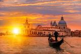 Venetian Gondolier Punting Gondola through Green Canal Waters of Venice Italy Fotografisk trykk av  muratart