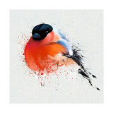 Pyrrhula. A Vivid Illustration of Bullfinch, close Up, with Elements of the Sketch and Spray Paint, Pósters por  Pacrovka