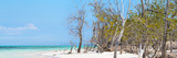 Cuba Fuerte Collection Panoramic - White Sand Beach Fotografie-Druck von Philippe Hugonnard