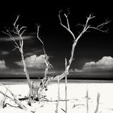 Cuba Fuerte Collection SQ BW - Serenity II Fotografisk tryk af Philippe Hugonnard