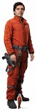 Star Wars: The Last Jedi - Poe Dameron - Mini Cutout Included Papfigurer