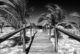 Cuba Fuerte Collection B&W - Wooden Pier on Tropical Beach VI Fotografisk tryk af Philippe Hugonnard