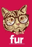 Fur (sanaleikki Her-elokuvan nimestä) Posters