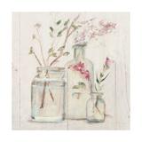 Blossoms on Birch VI