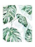 Split Leaf II Premium Giclee Print by Grace Popp