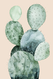 Cactus on Coral II Posters by Grace Popp