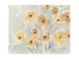 Sunset Poppies I Premium Giclee Print by Samuel Dixon