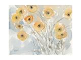 Sunset Poppies II Premium Giclee Print by Samuel Dixon