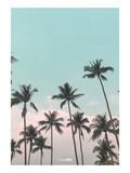 Palms in the City Posters por  PhotoINC Studio