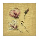 Magnolia Blossom on Gold