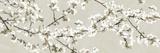 Confetti Blossom Reproduction procédé giclée par Tania Bello