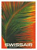 South America - SwissAir - Palm Frond Kunstdrucke von Manfred Bingler