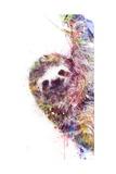 Sloth Láminas por  VeeBee