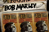 Reggae Records NYC Plastikschild