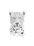 Lovely Leopard Prints by Balazs Solti