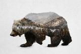 The Kodiak Brown Bear Pósters por  Davies Babies