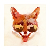 Big Town Fox Prints by Robert Farkas