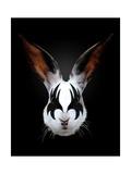 Rabbit Rocks Prints by Robert Farkas