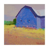 Summer Field Prints by Mike Kelly