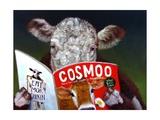Cow Tips Prints by Lucia Heffernan