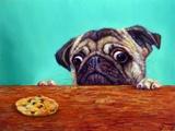 Dilemma Art by Lucia Heffernan
