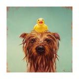 Bath Time Poster von Lucia Heffernan