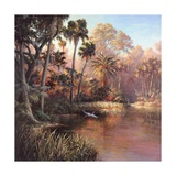 Myakka Sunset Prints by Art Fronckowiak