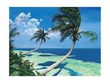 Beckoning Palms Posters par Scott Westmoreland