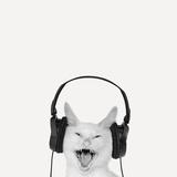 Rockin' Kitten Photographic Print by Jon Bertelli