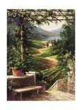 Chianti Vineyard Poster by Art Fronckowiak