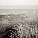 Tuscan Coast Dunes 2 Reproduction photographique par Alan Blaustein