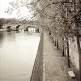 Sepia-Promenade Seine 2 Reproduction photographique par Alan Blaustein