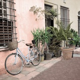Liguria Bicycle 2 Photographic Print by Alan Blaustein