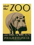 Visit the Zoo Posters