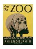 Visit the Zoo Art