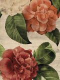 Rustic Flower Impressão giclée por Maria Mendez