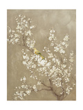 White Cherry Blossom II Neutral Crop Bird Poster di Danhui Nai