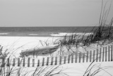 Fence on the beach, Bon Secour National Wildlife Refuge, Gulf of Mexico, Bon Secour, Baldwin Cou... Fotografie-Druck