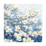 Dogwood Blossoms II Indigo Affiches par James Wiens