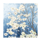 Dogwood Blossoms I Indigo Poster par James Wiens