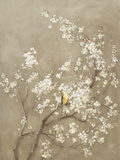White Cherry Blossom I Neutral Crop Bird Posters by Danhui Nai