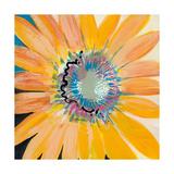 Sunshine Flower IV Premium Giclee Print by Leslie Bernsen