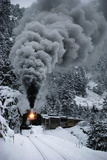 A Train Chugs Through the Snow Blanketing the San Juan Mountains Vægplakat af Paul Chesley