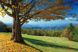 Blue Ridge Beauty Photographic Print by Mike Jones