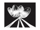 Spoons Photographic Print by Mike Feeley