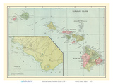 Hawaiian Islands - Sandwich Islands - Harbor of Honolulu Poster av  Pacifica Island Art