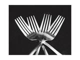 Fourchettes Reproduction photographique par Mike Feeley