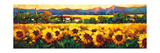 Sweeping Fields of Sunflowers Arte por Nancy O'toole